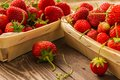 Strawberries Stock Photos - 93400073