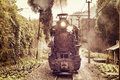 Steam Narrow-gauge Train. Stock Photo - 93420790