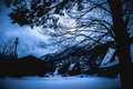 Snow Covered The Ground In Winter. Silhouette Of Dry Trees And F Stock Image - 93423611