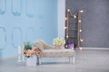Interior Mock Up Photo. Blue Wall With Leather Material Divan Sofa And Pot With Plant Flowers And Ladder. Background Photo With Co Royalty Free Stock Image - 93429186