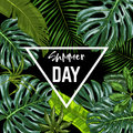 Triangle Banner With Realistic Tropical Leaves Stock Photos - 93444953