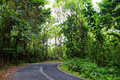 Famous Road To Hana Fraught With Narrow One-lane Bridges, Hairpin Turns And Incredible Island Views, Maui, Hawaii Royalty Free Stock Images - 93448259