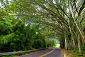 Famous Road To Hana Fraught With Narrow One-lane Bridges, Hairpin Turns And Incredible Island Views, Maui, Hawaii Stock Images - 93448514