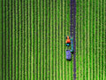 Aerial View Of Tractor Harvesting Field Of Lavender Royalty Free Stock Photography - 93448527