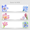 Wildflower Crocuses Promo Sale Web Banner Template In A Watercolor Style Isolated. Royalty Free Stock Photo - 93460555