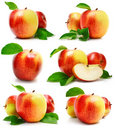 Set Red Apple Fruits With Cut And Green Leaves Stock Image - 9369251