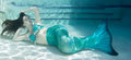 Model Underwater In A Pool Wearing A Mermaids Tail. Stock Photography - 93658072