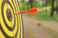 Dart Board With Darts Arrow In The Target Center In The Park Royalty Free Stock Image - 93665566