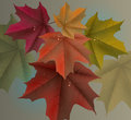 Red Maple Leaves Background And Dew Drops Royalty Free Stock Image - 93676386