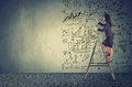 Businesswoman Standing On Ladder And Drawing Business Plan Ideas Royalty Free Stock Image - 93685536