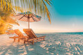 Beach Background. Beautiful Beach Landscape. Tropical Nature Scene. Palm Trees And Blue Sky. Summer Holiday And Vacation Concept. Royalty Free Stock Photography - 93725477