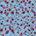 Floral Seamless Pattern Royalty Free Stock Image - 93757726