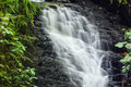 Small Waterfall In Monteverde Cloud Forest Reserve Stock Images - 93785114