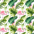 Tropical Isolated Seamless Pattern With Flamingo. Watercolor Tropic Drawing, Rose Bird And Greenery Palm Tree, Tropic Royalty Free Stock Image - 93786536