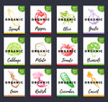 Vector Organic Vegetables Cards Set. Farm Eco Products Tags Collection. Hand Sketched Greens Illustration Stock Images - 93793574