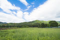 Beautiful Landscape Of Takayama Mura At Sunny Summer Or Spring Day And Blue Sky In Kamitakai District In Northeast Nagano Royalty Free Stock Photo - 93799865