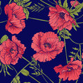 Seamless Pattern With Pink And Red Poppy Flowers In Botanical St Royalty Free Stock Photos - 93820748