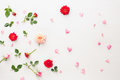 Flowers And Petals Background Royalty Free Stock Photography - 93955227