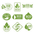 Labels Or Eco Logo Set With Plants And Green Leafs. Vector Icons Isolate On White Background Royalty Free Stock Photo - 94015245