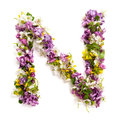The Letter «N» Made Of Various Natural Small Flowers. Royalty Free Stock Images - 94021639