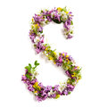 The Letter «S» Made Of Various Natural Small Flowers. Stock Images - 94021744