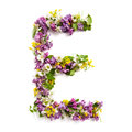 The Letter «E» Made Of Various Natural Small Flowers. Royalty Free Stock Photo - 94021745
