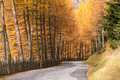 Fall Colors In Dolomiten, Italy Royalty Free Stock Images - 94024669