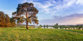Summer Landscape Fast Of The Ural River With The Trees On The Bank Of Russia, June Stock Image - 94025571