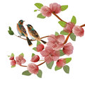 Nature Background With Blossom Branch Of Pink Sakura Flowers. Stock Photography - 94079462