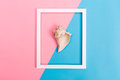 Seashell And Frame On A Bright Background Stock Image - 94086201