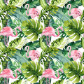 Tropical Isolated Seamless Pattern With Flamingo. Watercolor Tropic Drawing, Rose Bird And Greenery Palm Tree, Tropic Royalty Free Stock Photography - 94138627
