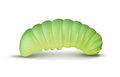 Light Green Caterpillar Royalty Free Stock Photography - 94173547