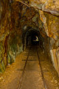 Historic Rail Tunnel, A Part Of An Old Gold Mine Transportation System Located In North Island In New Zealand Stock Photo - 94346260