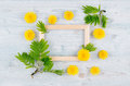 Spring Background Of Blank Wood Frame, Yellow Dandelion Flowers, Young Green Leaves On Light Blue Wooden Board. Stock Photography - 94361242