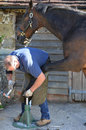 Farrier Working On A Horse. Stock Image - 94407631