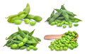 Set Of Green Edamame Beans Isolated On White Stock Images - 94439914