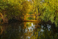 Landscape With Water And Vegetation In The Danube Delta Royalty Free Stock Photography - 94509407