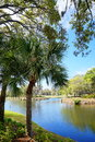 Lake And Tree In A Resort Stock Photography - 94513692