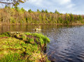 Burr Pond State Park Spring View Royalty Free Stock Photo - 94526225