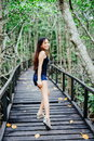 Young Beautiful Girl Portrait On The Wooden Bridge In The Mangrove Forest Stock Images - 94574364
