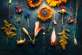 Autumn Fall Floral Flat Lay Made Of Flowers, Sunflowers, Leaves And Canina Berries On Rustic Vintage Background , Top View. Royalty Free Stock Images - 94602459
