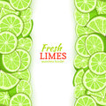 Lime Fruit Vertical Seamless Border. Vector Illustration Card Top And Bottom Fresh Tropicat Green Lemon Whole And Slice Royalty Free Stock Photo - 94663815