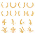 Silhouette Of Wheat. Corn Vector Symbols Isolated On White Royalty Free Stock Photography - 94846987