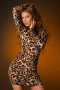 Beautiful Young Woman In Leopard Dress Royalty Free Stock Photo - 94959115