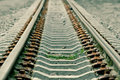Grass Grows On Rails- Green Toned Version Royalty Free Stock Image - 956266