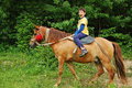 Happy Boy Riding A Horse Royalty Free Stock Images - 95100789