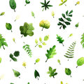 Vector Seamless Pattern With Green Leaves Painted With Watercolors On White Background. Stock Image - 95156601