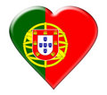 Icon Of Portugal Flag Stock Photo - 9521040
