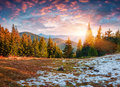 First Snow In The Mountain Forest. Royalty Free Stock Image - 95205216