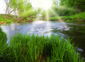 Sunny River Stock Photography - 9543852